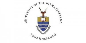 university-of-witwatersrand-south-africa