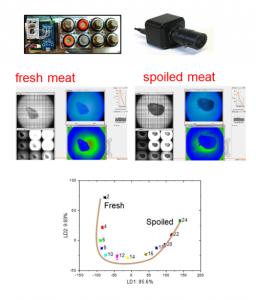 food-state-analysis
