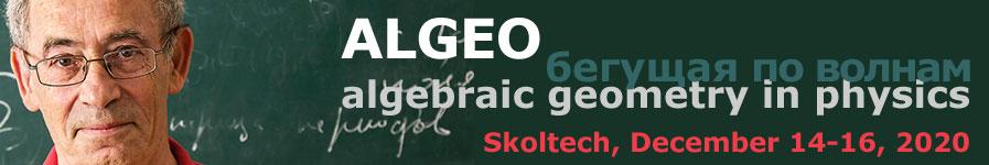 algeo13